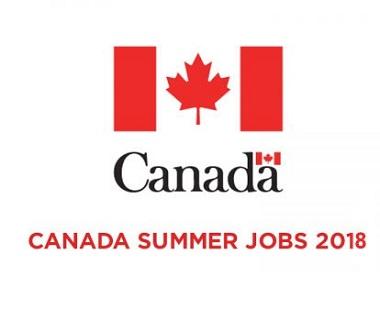 summerjobs.png