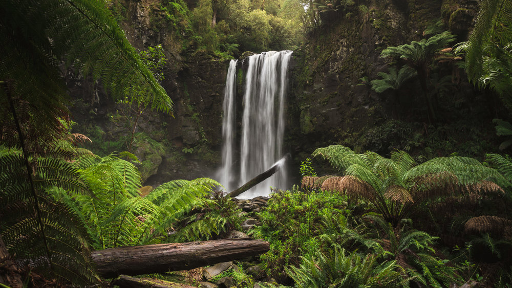 Along the Great Ocean Road you'll find the very popular Hopetoun Falls – a very mighty beast. She looks great under a long exposure, but I found a shutter speed of 1/8 of a second truly captures her destructive energy.