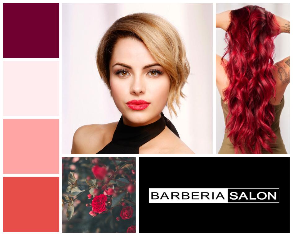 Barberia Branding Palette.png