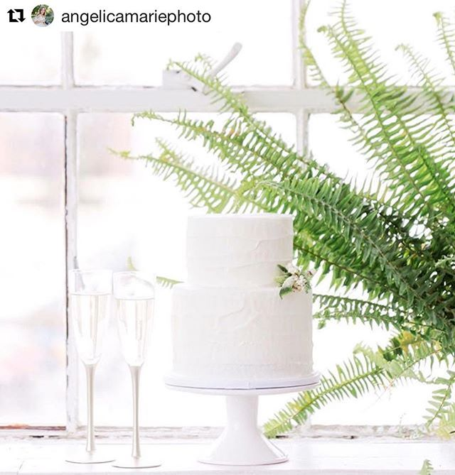 Loving this simple yet elegant photo shoot! #repost @angelicamariephoto (@get_repost) ・・・ Simple...yet satisfying. #lionkingreference 😋 • Creative team: Photographer: @angelicamariephoto Designer: @anenlightenedevent @cynthiaalexanderevents Makeup and Hair: @cheektocheekartistry Florals: @rogueandfox Stationery/Calligraphy: @kelly_patrice Rentals: @partypleasers Model/Style Consultant: @ss_karkenny Cake: @deliciousartistry Studio: @fdphotostudio  Dress: @bhldn #bhldnbride  Tux: @friartux Earrings: @romajewelers Bracelets:  @ravenandlily  #texturedcake #brightwhite #ferns #deliciousartistry
