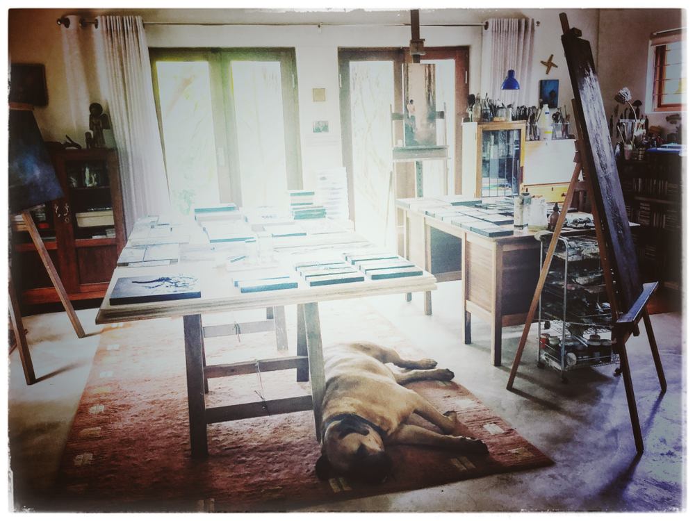 Soon ... - Hugo and I are busy in the studio ... so more works will soon be available.*A few available through Art in The Yard, Franschhoek, a whole stack almost ready to go online - Jan, 2018