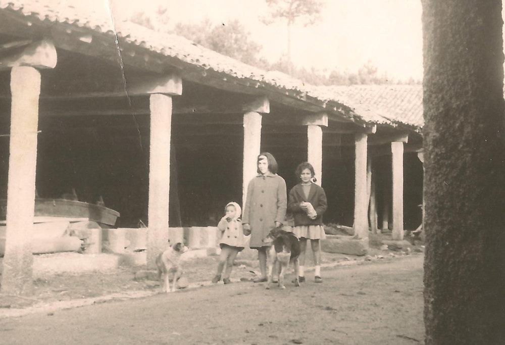 Salazón de Pescado de Coroso /  Fish Salting House in Coroso