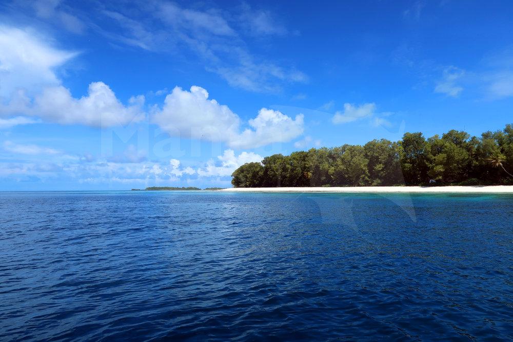 230_LaurenPeel_20171106_LaurenPeel_DArros Island.jpg