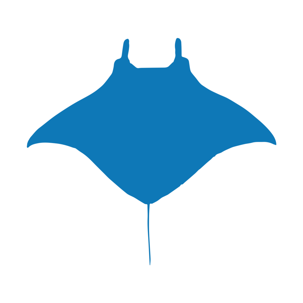 Key Achievements Icons_Blue_Manta.png