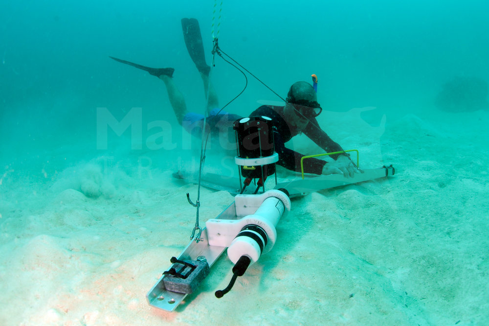 Researcher Checks Deployment of Current Profiling Instrument, Hanifaru Bay, Baa Atoll, Maldives © Guy Stevens, Manta Trust 2017.jpg