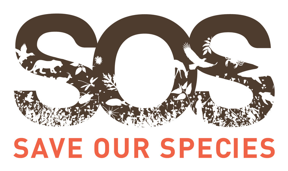 sos_logo_final-high-res-dec12.jpg