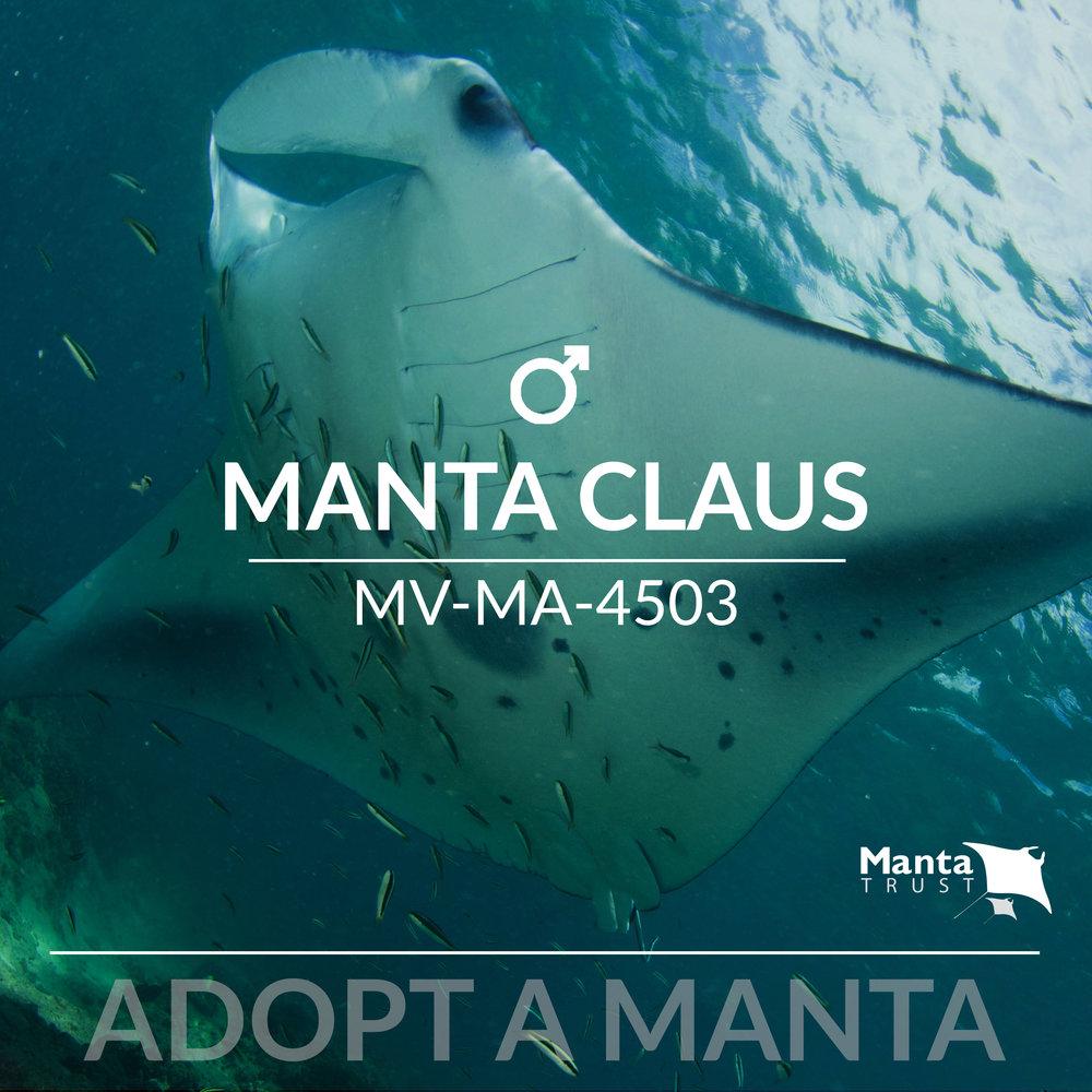 Manta Claus Ad.jpg
