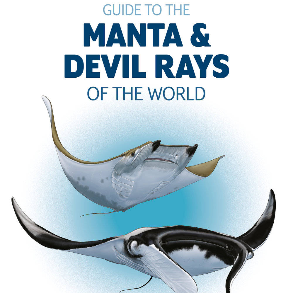 Guide to Manta and Devil Rays cover large.jpg
