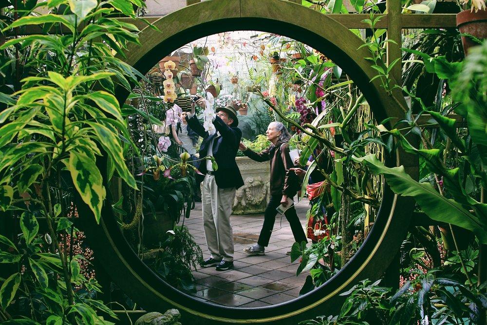emilce-giardino-556245-unsplash.jpg