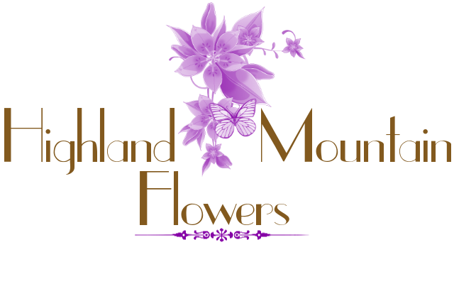 Highland Mtn Flowers.png