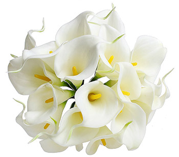fleuriste_daluka_calla_fleurs.jpg