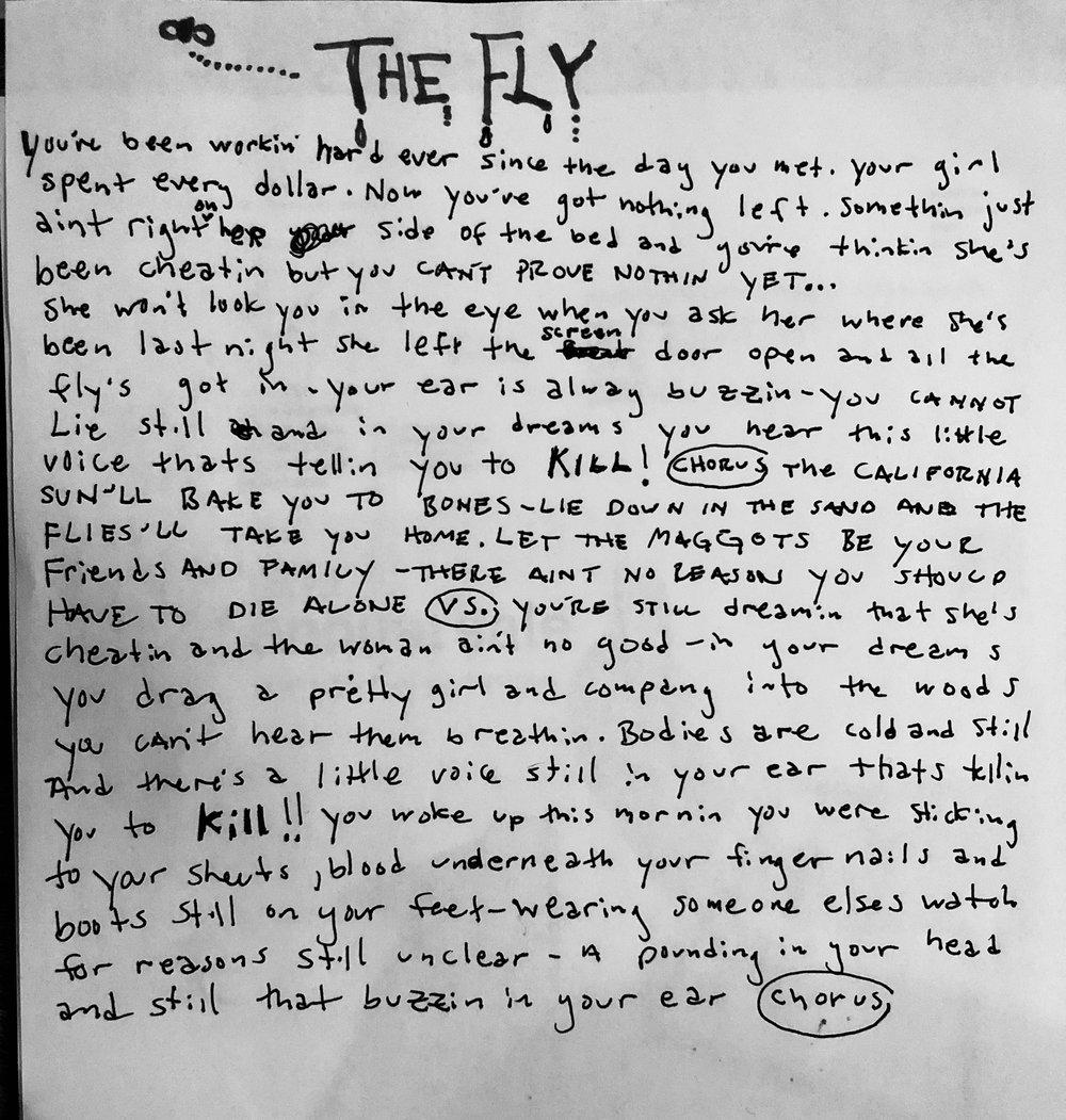 The Fly!.jpg