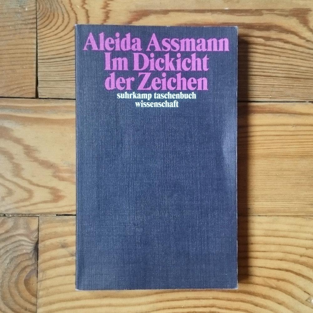Aleida Assmann,  Im Dickicht der Zeichen  (Berlin: Suhrkamp, 2015)