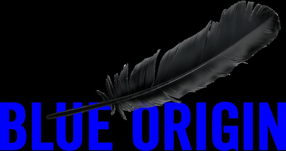 logo-blue-origin-png-blue-origin-logo-985.png