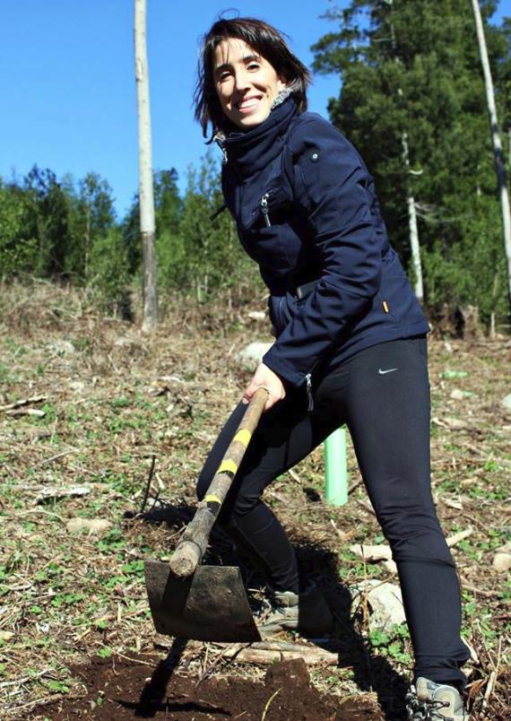 INLU_Plantar_uma_Arvore.jpg