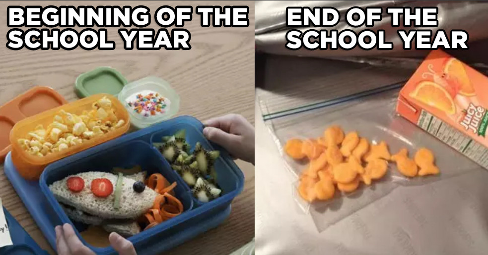 schoolyear.jpg