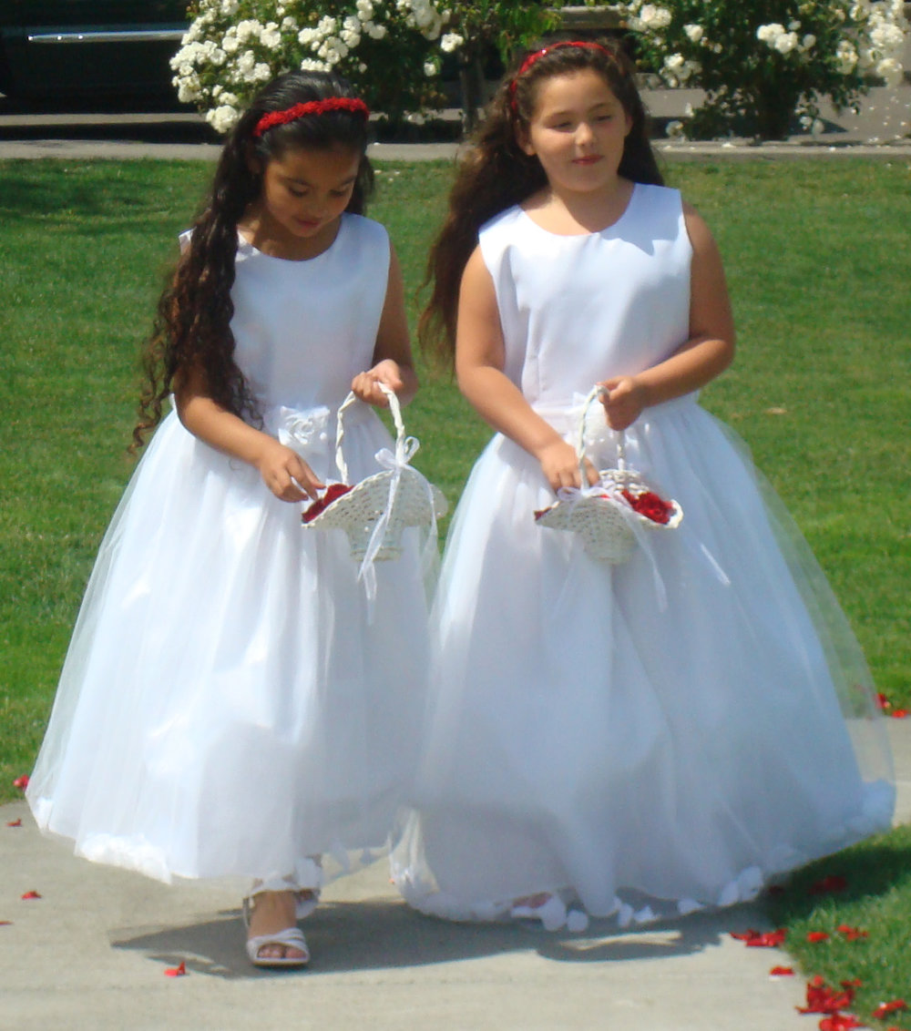 Flower Girl baskets red rose petals