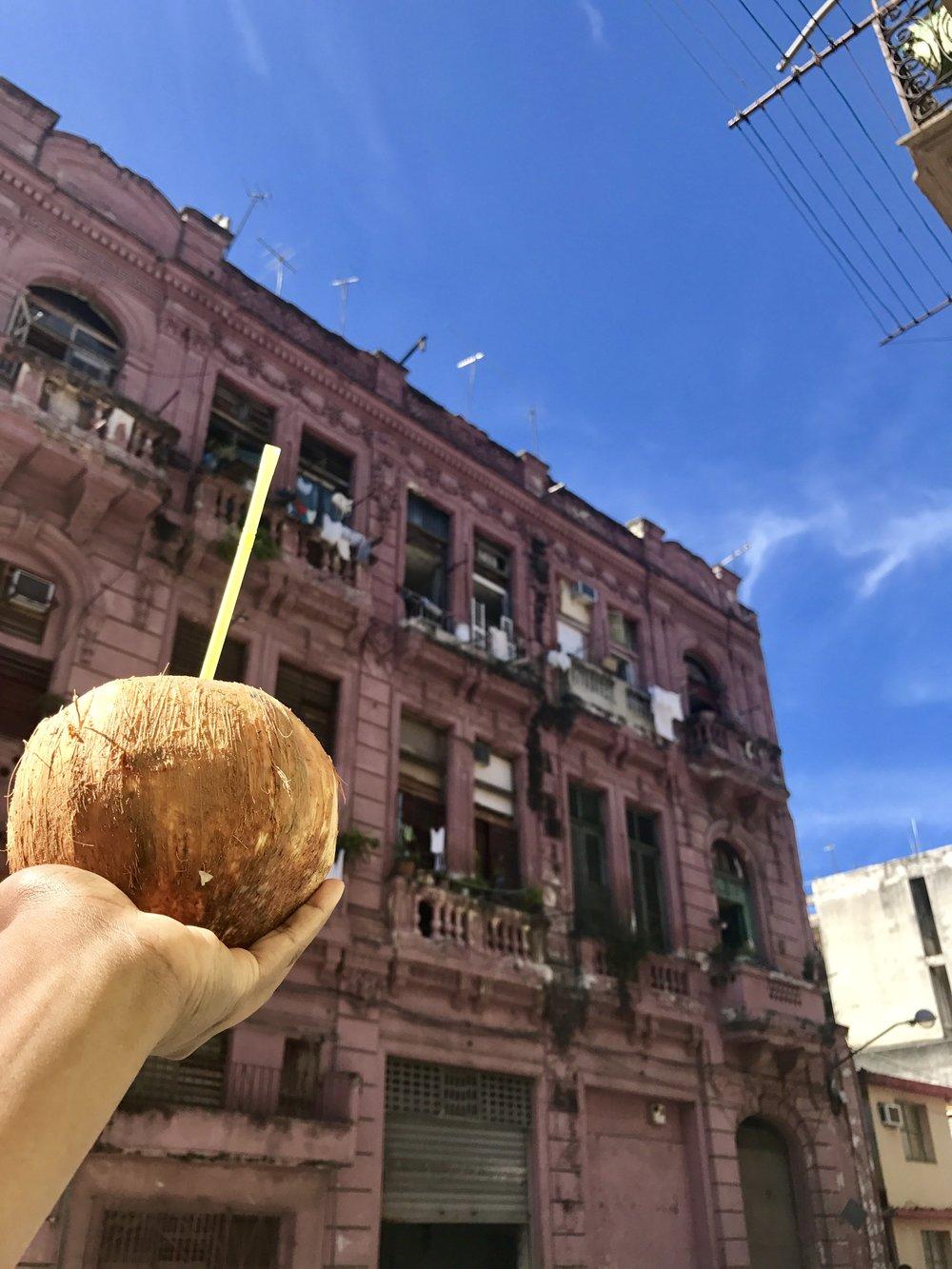 coconut building.jpg