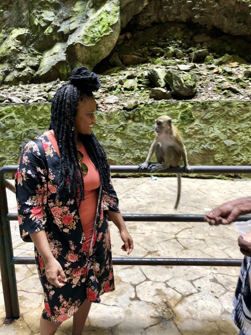 Batu Cave Monkey.jpg