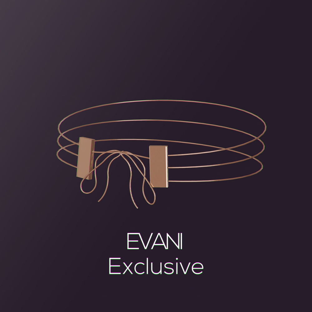 EVANI-Exclusive.png