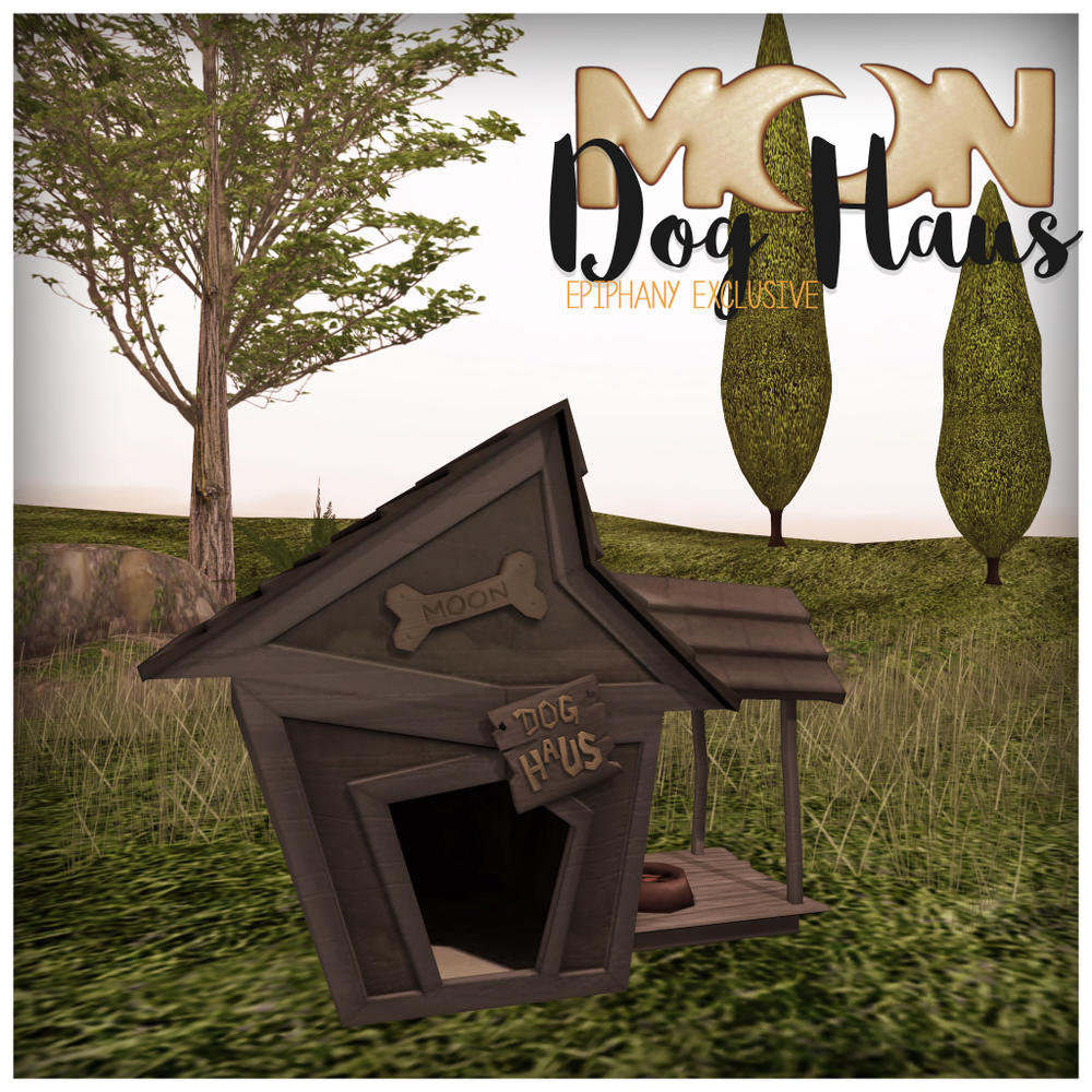 moon.dog_.haus_.ad_.png