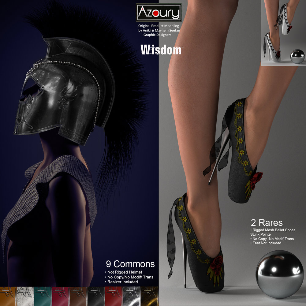 AZOURY-Wisdom-HelmetBallet-Shoes.jpg