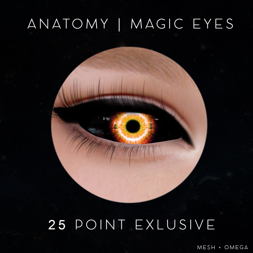 anatomy-magic25point-exclusive.png