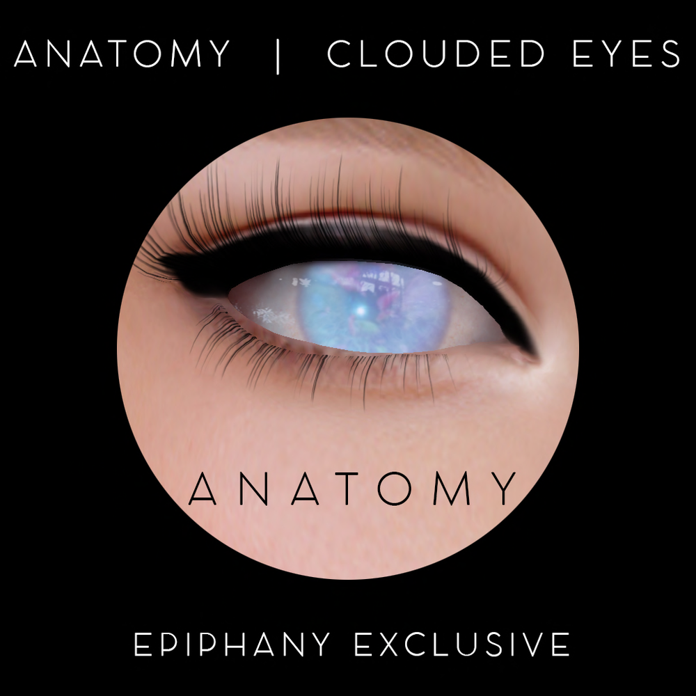 ANATOMY EXCLUSIVE POINTS REWARDS EPIPHANY APRIL 2018.png