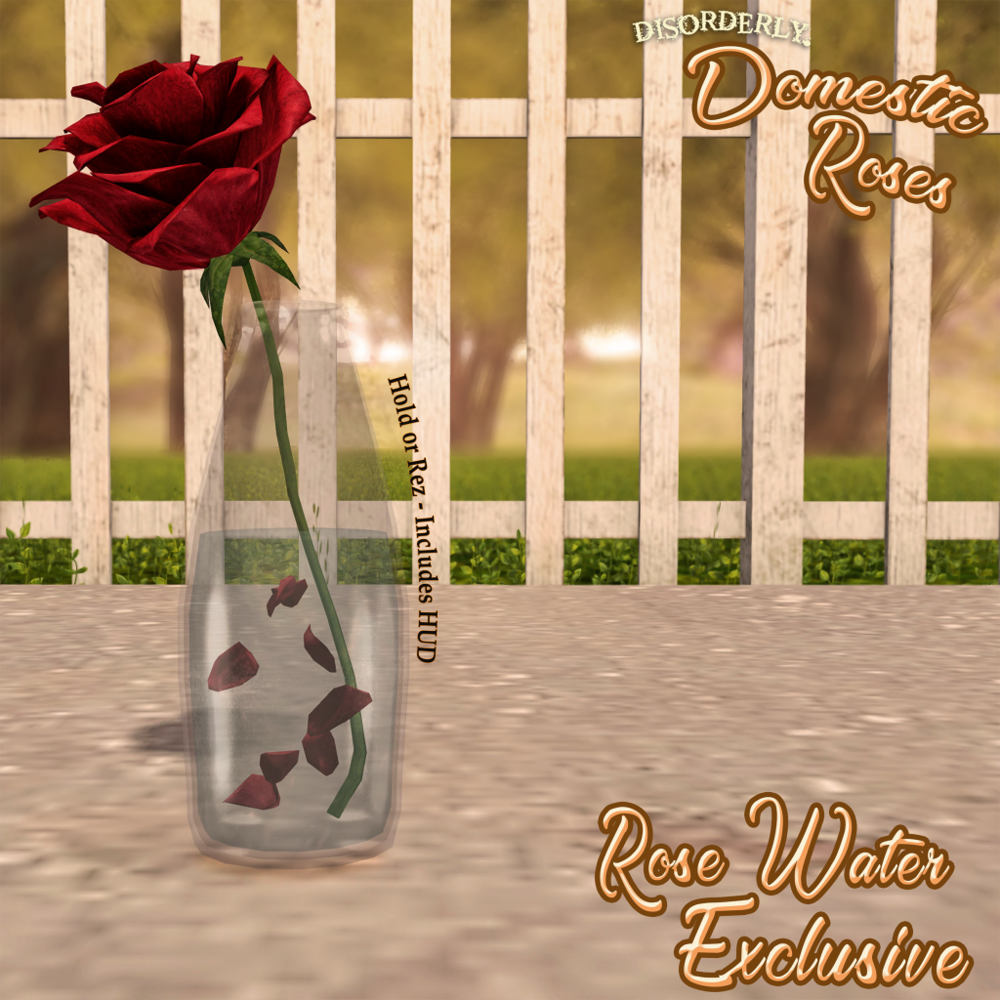 DISORDERLY. _ Rose Water _ EXCLUSIVE.png