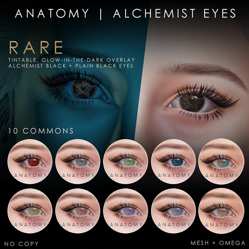 ANATOMY_epiphany_alchemist_eyes_jan2019_SLsizer2.jpg