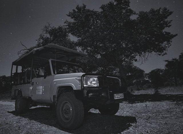 Safari in the Kalahari. I should have been a poet.
