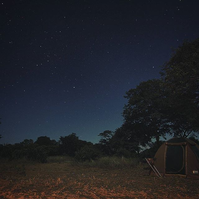 Falling asleep to lions roaring outside our tent in the Kalahari, yeah that's one for the books. #buckleup
