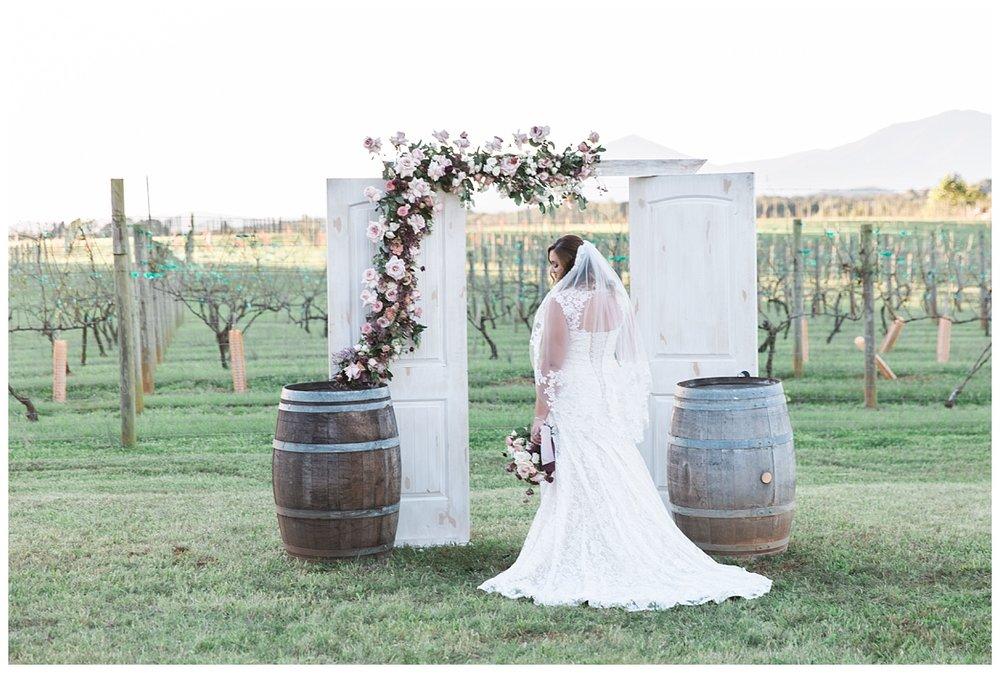lynchburg_virginia_wedding_photographer_melissa_batman_photography_leogrande_winery60.jpg