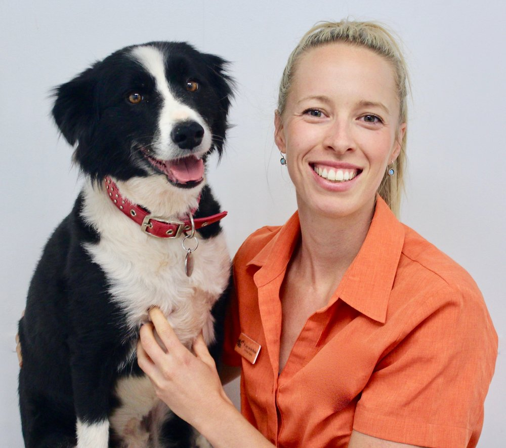 Dr Lucy is a veterinary behaviourist who can relate first-hand to the every- day struggles of living with a special needs pet with behavioural problems.  -