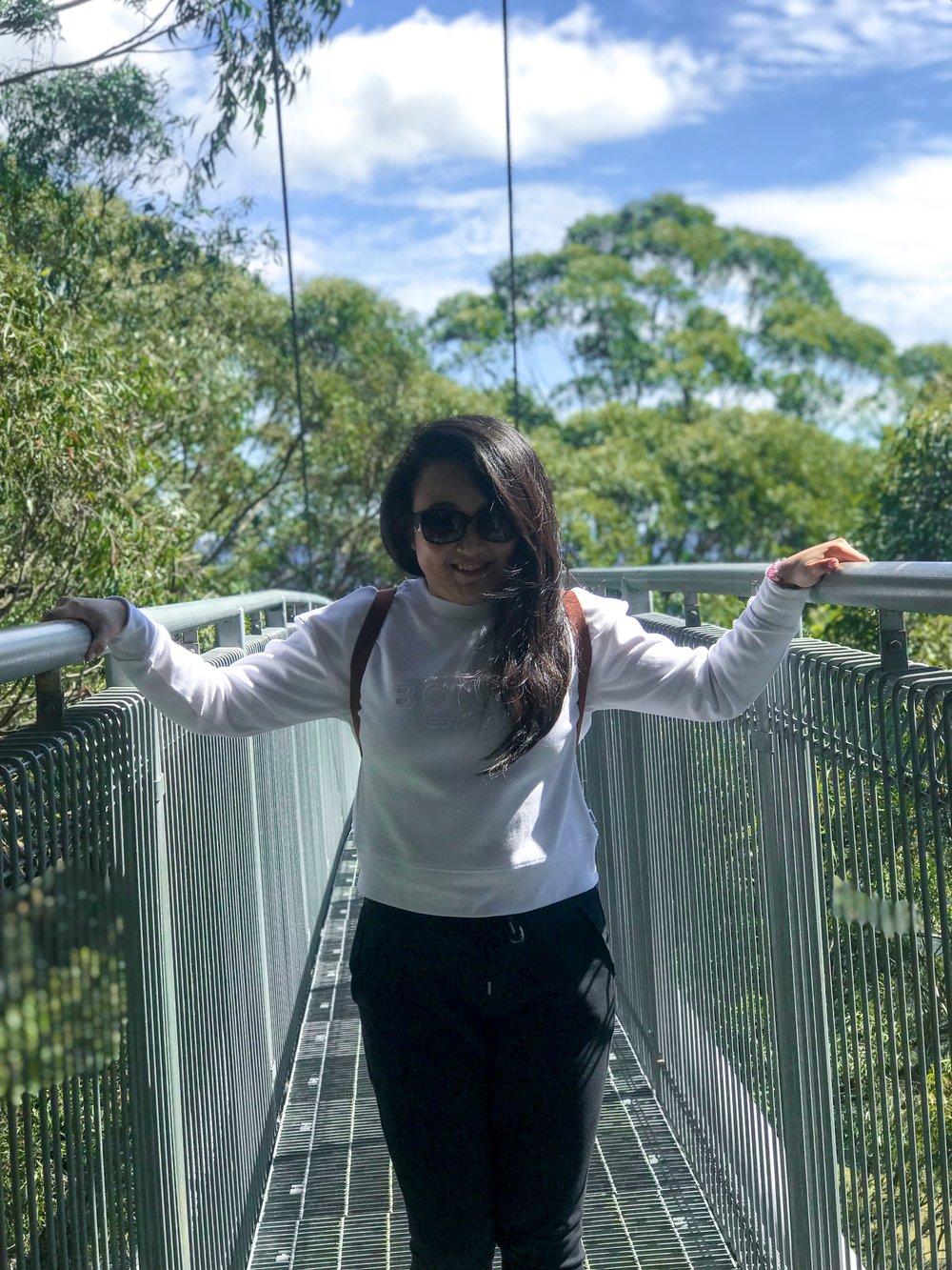 Things To Do in Shellharbour, Illawarra Fly Treetop Walk3.JPG