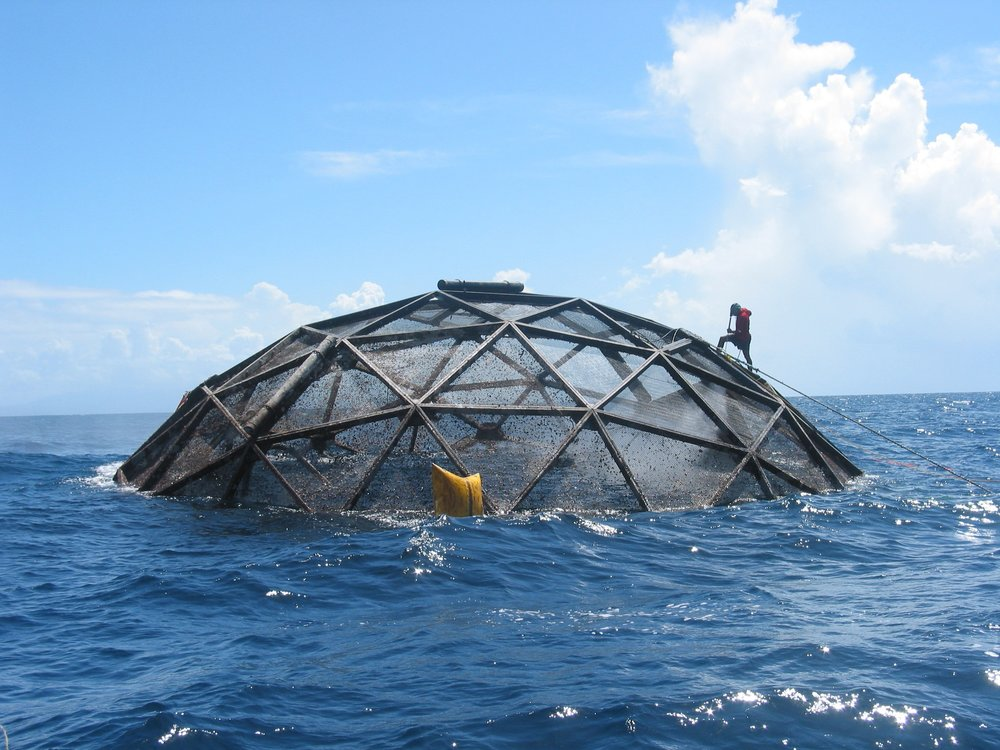 Geodesic marine cages that can be disassembled at will. Credit: Ocean Farm Technologies