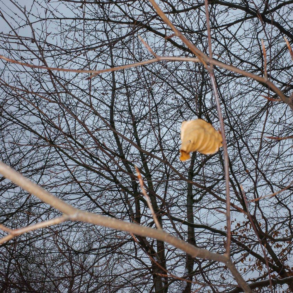 Winter_Neverland-7.jpg
