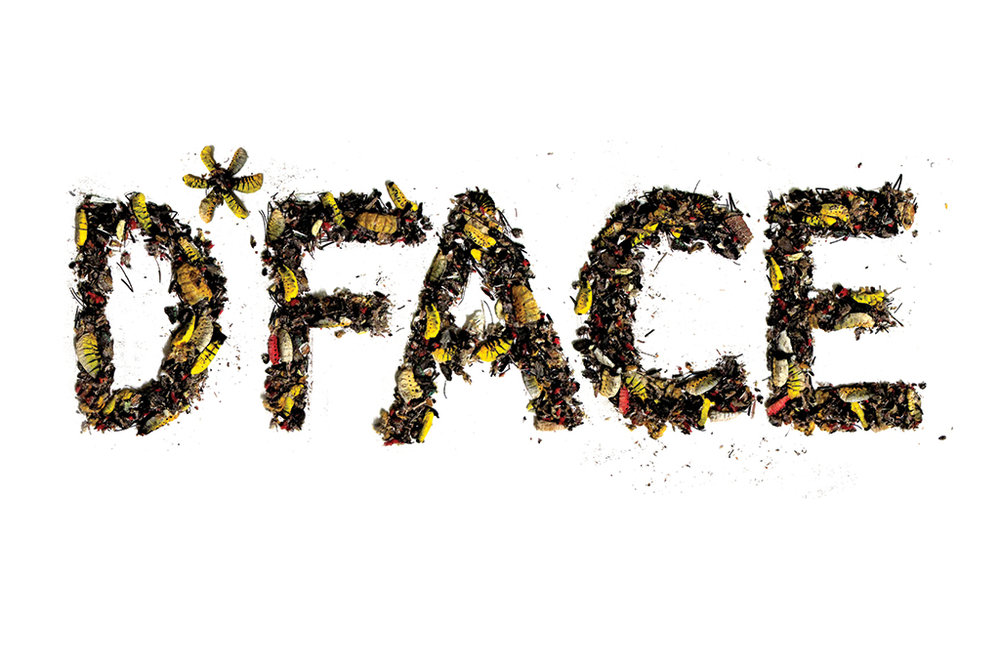 DFace-Bugged-Out-2011.jpg
