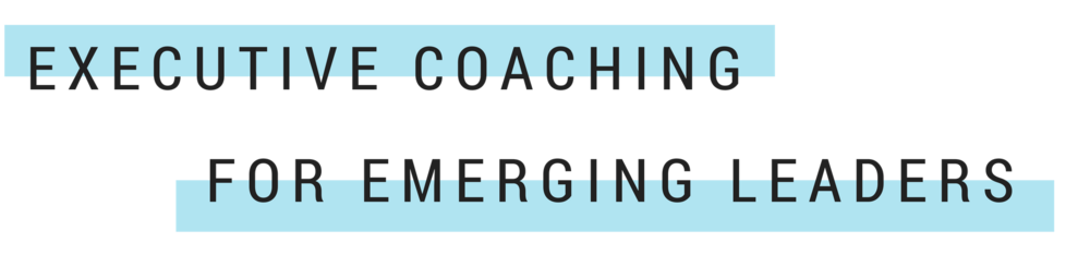 EXECUTIVE COACHING.png