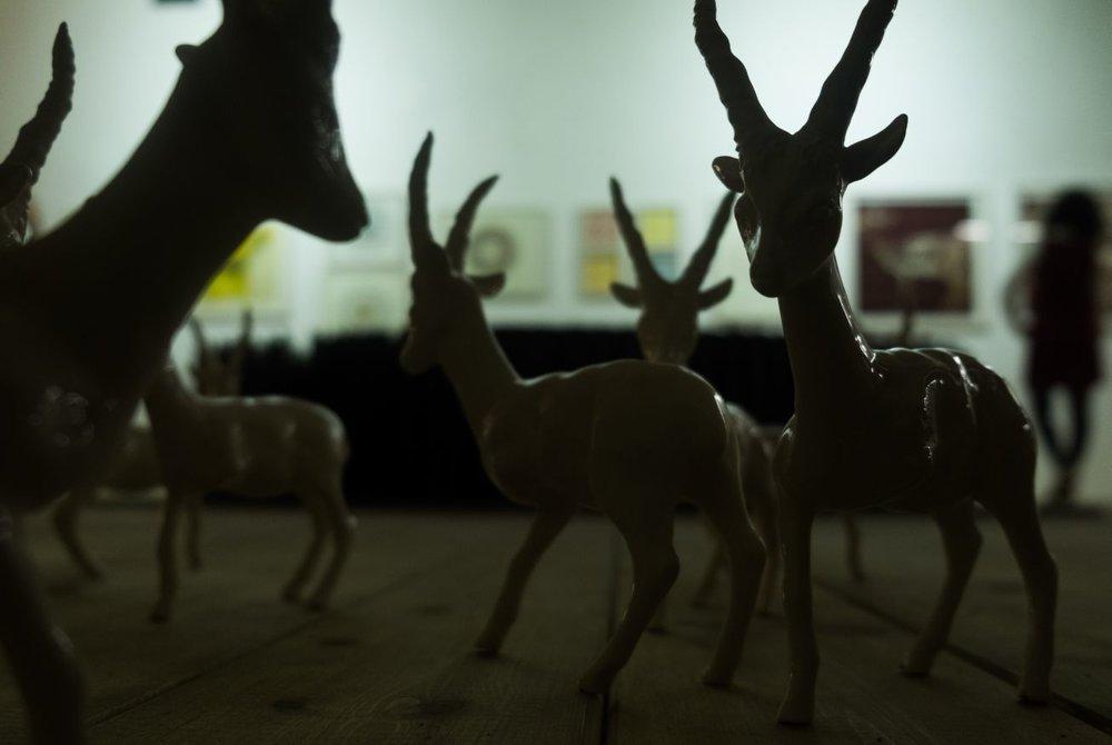 Gazella, Gazella, Gazella, Palestinian Gazelle at Manjm Haifa Culture Lab.
