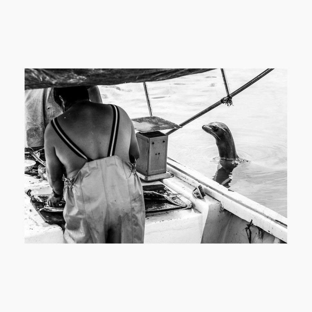 ©-2018-Harry-W-Edmonds-London-Photographers-Note-11-The-Fishermen-PN05.jpg