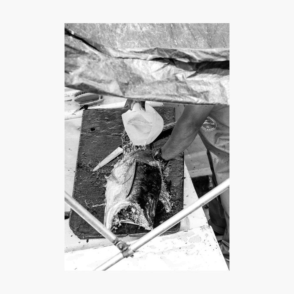 ©-2018-Harry-W-Edmonds-London-Photographers-Note-11-The-Fishermen-PN06.jpg
