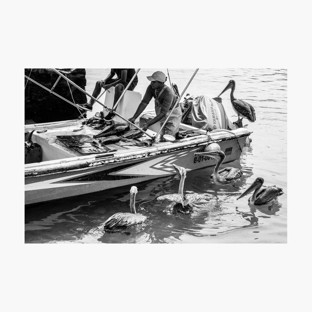 ©-2018-Harry-W-Edmonds-London-Photographers-Note-11-The-Fishermen-PN09.jpg