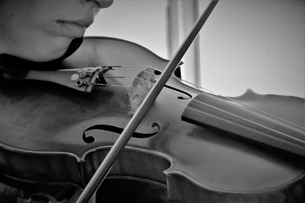 Spartanburg and Greenville Wedding Musicians | Palmetto State Weddings