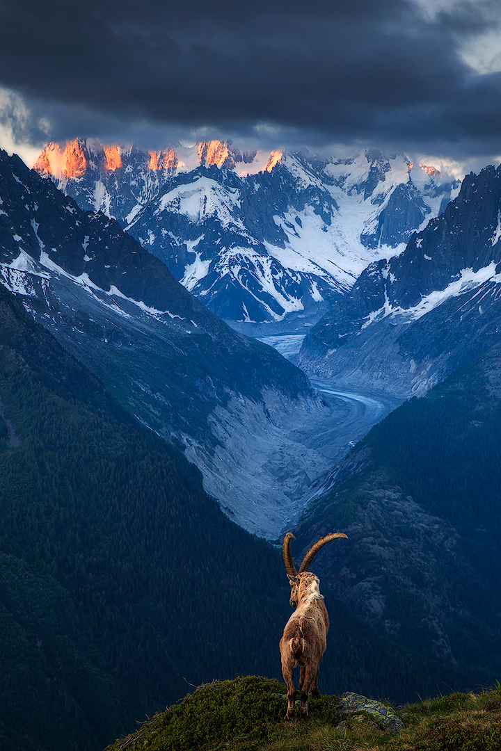 His kingdom (Chamonix, France)