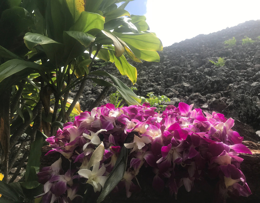 hawaii_light_flowers.jpg