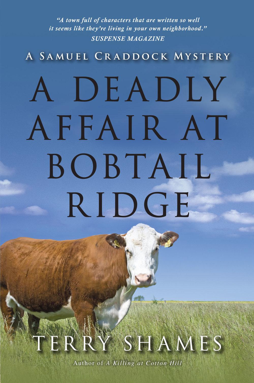 Deadly Affair_cover 2 (1).jpg