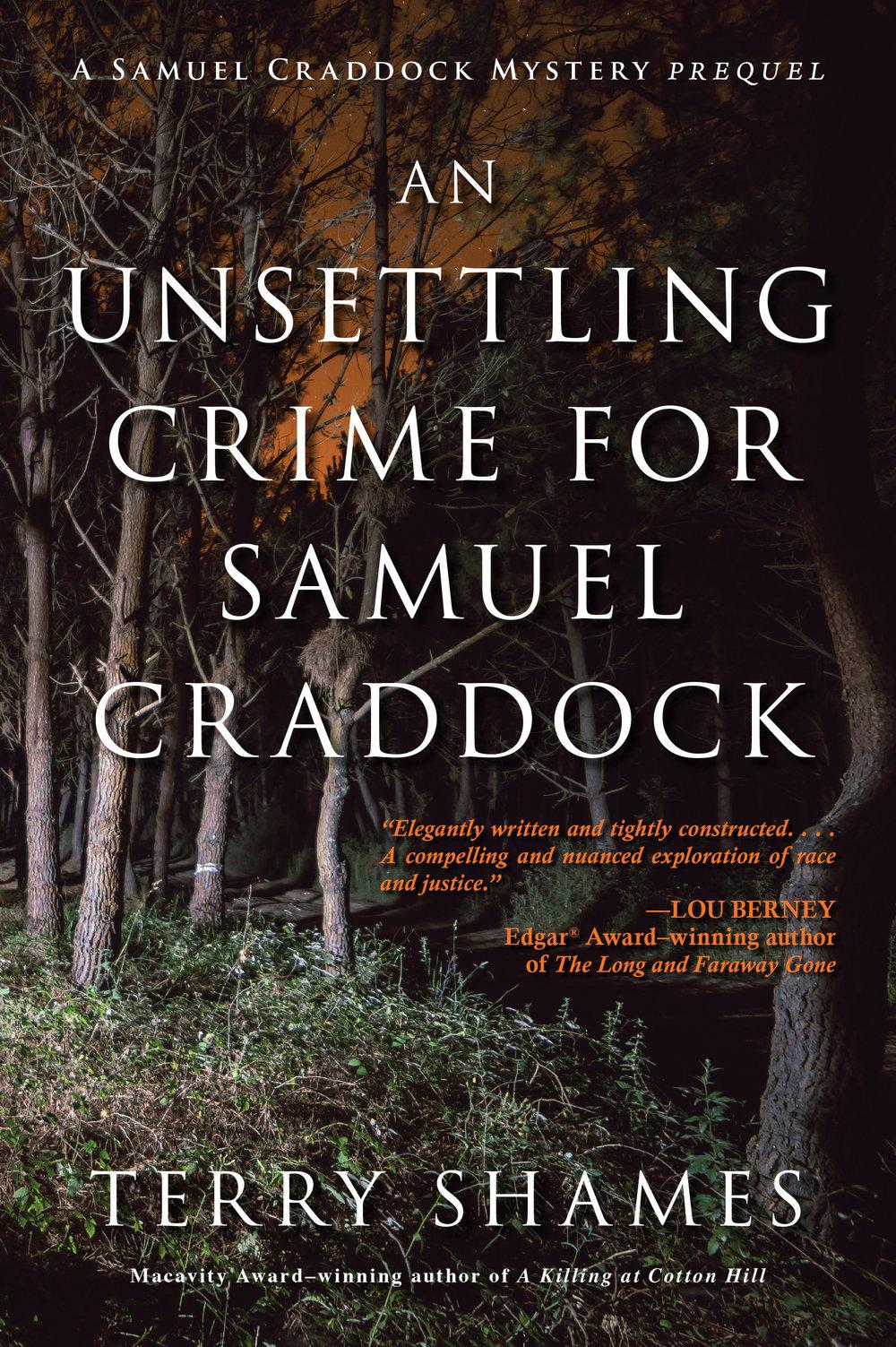 Unsettling Crime_cover.jpg
