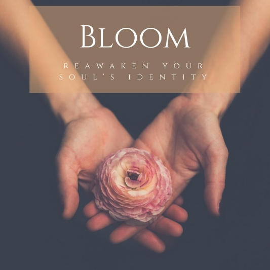 Register for the  Bloom     Program    Delve into your inner landscape and play with a variety of creative and spiritual techniques in this 3-month program custom designed just for  you .