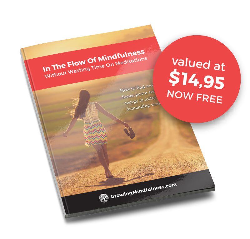 Mindfulness meditation can be easily replaced by another, more effective method. Read all about it in the free mindfulness e-book.